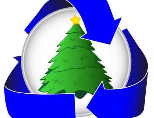 Here's The Proper Way to Recycle Your Christmas Tree